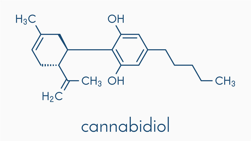 Cannabidiol is the scientific name for CBD, which is the part of the cannabis plant that most interests those seeking the healing, non-psychotropic elements of cannabis. CBD is found in both hemp and marijuana plants.
